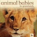 Animal Babies in Grasslands (Animal Babies)