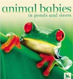 Animal Babies in Ponds and Rivers (Animal Babies)